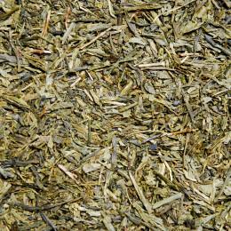 Thé vert de Chine Sencha