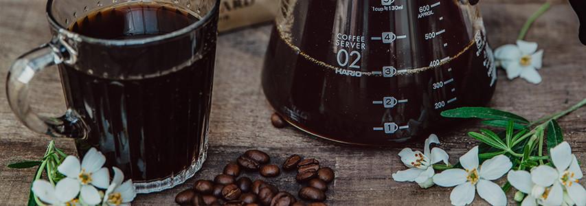 Pour les experts café